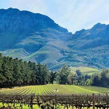 The Three Boutique Hotel Additional Services Winelands Tour